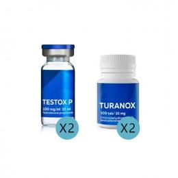 Steroidkurs für Anfänger 2
